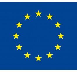 Czy potrzebujemy Wielkiej Brytanii w UE? Tłumaczenie konferencji.